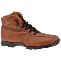 Pantofi Bărbați Drumetie și trekking Docksteps  Maro