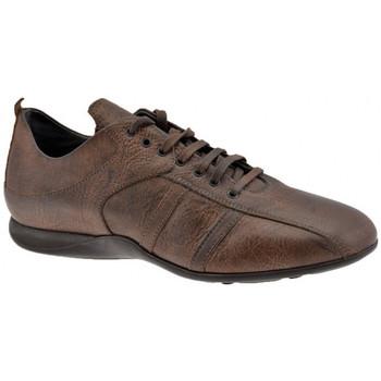 Pantofi Bărbați Pantofi sport stil gheata Docksteps  Maro