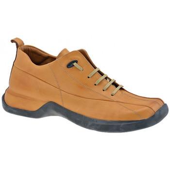 Pantofi Bărbați Pantofi sport stil gheata Pawelk's  Maro
