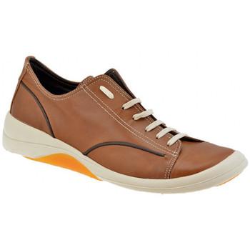 Pantofi Bărbați Pantofi sport Casual Pawelk's  Maro