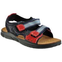 Pantofi Băieți Sandale  Inblu  albastru