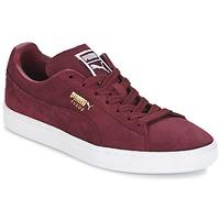 Pantofi Bărbați Pantofi sport Casual Puma SUEDE CLASSIC + Roșu-bordeaux