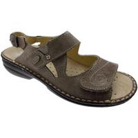 Pantofi Femei Sandale  Calzaturificio Loren LOM2595ta tortora
