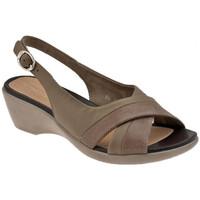 Pantofi Femei Pantofi cu toc Stonefly  Multicolor
