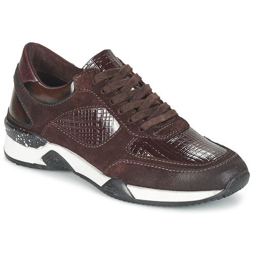 Pantofi Femei Pantofi sport Casual Dream in Green FARRICA Roșu-bordeaux