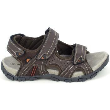 Pantofi Bărbați Sandale  Elementerre Akka Marron Maro