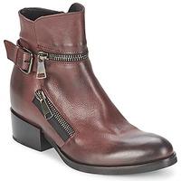 Pantofi Femei Botine Strategia ZOOLI Bordo