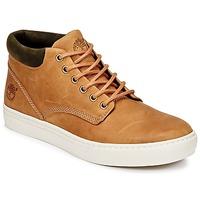 Încăltăminte Bărbați Pantofi sport stil gheata Timberland ADVENTURE 2.0 CUPSOLE CHK Maro
