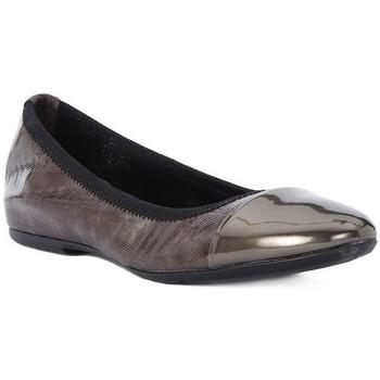 Pantofi Femei Balerin și Balerini cu curea Frau WAVE TAUPE Marrone