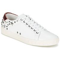 Pantofi Femei Pantofi sport Casual Ash DAZED Alb