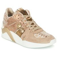 Încăltăminte Femei Pantofi sport stil gheata Serafini CHICAGO Bej / Auriu