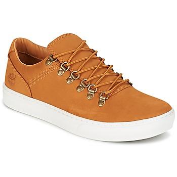 Încăltăminte Bărbați Pantofi sport Casual Timberland ADV 2.0 CUPSOLE ALPINE OX Maro