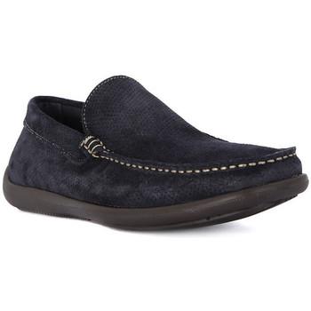 Pantofi Bărbați Mocasini Frau CASTORO BLU Blu