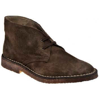 Pantofi Bărbați Ghete Koloski  Maro