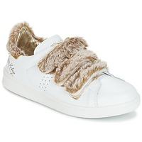 Pantofi Femei Pantofi sport Casual Ippon Vintage FLIGHT POLAR Alb / Alamă
