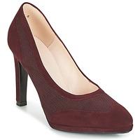 Pantofi Femei Pantofi cu toc Peter Kaiser HERNA Bordo