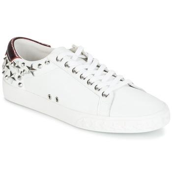 Pantofi Femei Pantofi sport Casual Ash DAZED White / Bordo