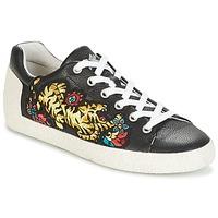 Pantofi Femei Pantofi sport Casual Ash NIAGARA Negru