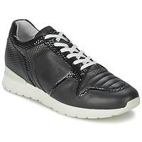 Pantofi Femei Pantofi sport Casual Bikkembergs KATE 420 Negru