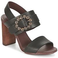 Încăltăminte Femei Sandale și Sandale cu talpă  joasă See by Chloé SB30123 Negru