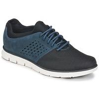 Încăltăminte Bărbați Pantofi sport Casual Timberland BRADSTREET F/L OXFORD Bleumarin