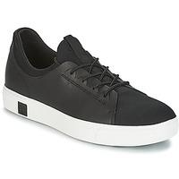 Încăltăminte Bărbați Pantofi sport Casual Timberland AMHERST LTHR LTT SNEAKER Negru