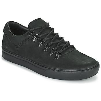Încăltăminte Bărbați Pantofi sport Casual Timberland ADV 2.0 CUPSOLE ALPINE OX Negru