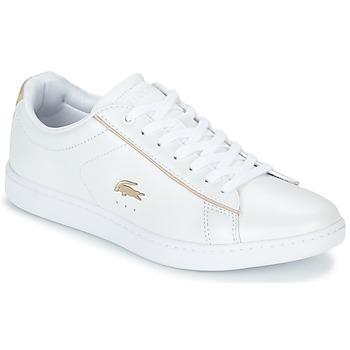 Încăltăminte Femei Pantofi sport Casual Lacoste CARNABY EVO 118 6 Alb
