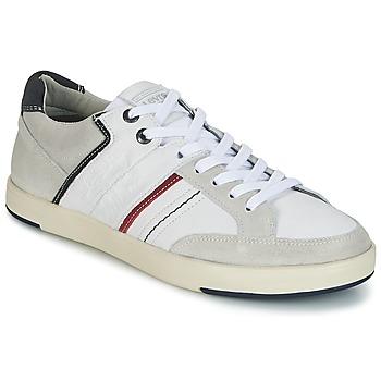 Încăltăminte Bărbați Pantofi sport Casual Levi's BEYERS Alb