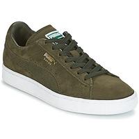 Pantofi Pantofi sport Casual Puma SUEDE CLASSIC + Kaki / Alb