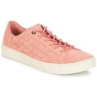 Pantofi Femei Pantofi sport Casual Toms LENOX Bloom