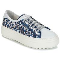 Încăltăminte Femei Pantofi sport Casual Serafini SOHO Albastru