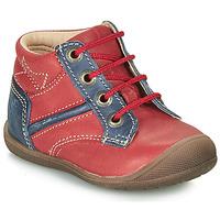Pantofi Băieți Ghete Catimini RATON Roșu / Albastru