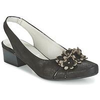 Pantofi Femei Sandale și Sandale cu talpă  joasă Dorking TUCAN Negru
