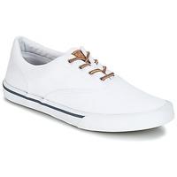Pantofi Bărbați Pantofi sport Casual Sperry Top-Sider STRIPER II CVO WASHED Alb
