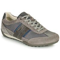 Pantofi Bărbați Pantofi sport Casual Geox U WELLS C Gri