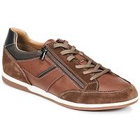 Pantofi Bărbați Pantofi sport Casual Geox U RENAN C Maro