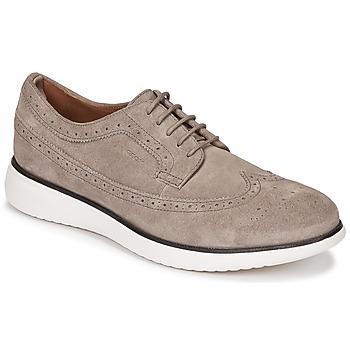 Încăltăminte Bărbați Pantofi Derby Geox WINFRED C Taupe