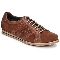 Pantofi Bărbați Pantofi sport Casual So Size IGOPINETTE Maro