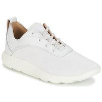 Încăltăminte Bărbați Pantofi sport Casual Timberland FLYROAM Alb