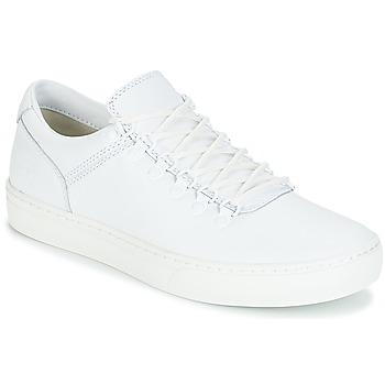 Pantofi Bărbați Ghete Timberland ADVENTURE2.0 CUPSOLE Alb