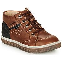Încăltăminte Băieți Pantofi sport stil gheata Catimini PASCOU Nub / Maro / Dpf