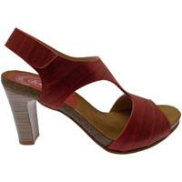 Pantofi Femei Sandale  Calzaturificio Loren LOJ0833ne nero