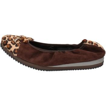 Pantofi Femei Balerin și Balerini cu curea Calpierre ballerine marrone camoscio cavallino AD574 Marrone