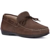Pantofi Bărbați Mocasini IgI&CO SCAMOSCIATO TORTORA Beige
