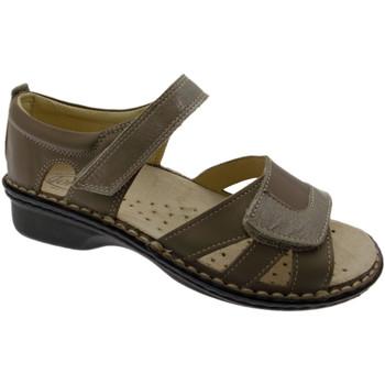 Pantofi Femei Sandale  Calzaturificio Loren LOM2524to tortora