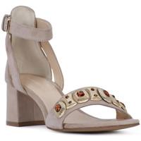 Pantofi Femei Sandale  Elvio Zanon SANDALO Rosa