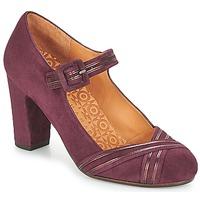 Încăltăminte Femei Pantofi cu toc Chie Mihara KALEI Roșu-bordeaux