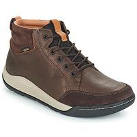 Încăltăminte Bărbați Pantofi sport stil gheata Clarks ASHCOMBE Maro