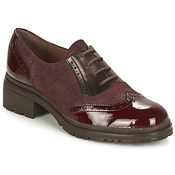 Pantofi Femei Pantofi Derby Wonders NAPHYA Bordo